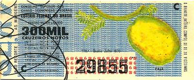 Extração 0776 - Cajá