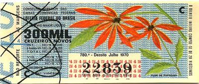 Extração 0780 - Flor de Papagaio